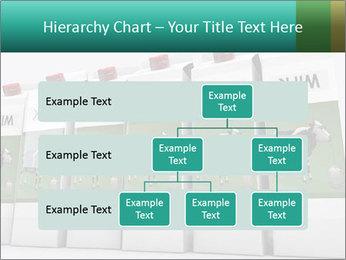 0000073912 PowerPoint Templates - Slide 67
