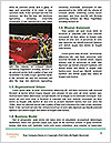 0000073915 Word Template - Page 4