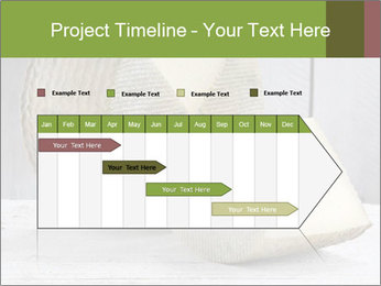 0000073916 PowerPoint Template - Slide 25