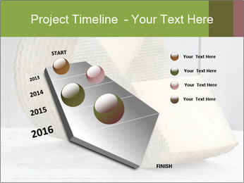 0000073916 PowerPoint Templates - Slide 26