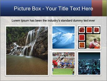 0000073919 PowerPoint Templates - Slide 19