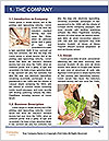 0000073933 Word Templates - Page 3