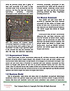 0000073940 Word Templates - Page 4