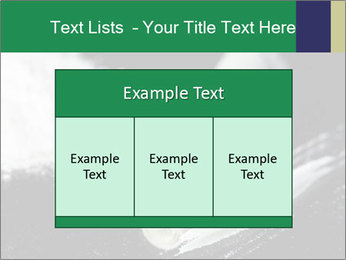 0000073947 PowerPoint Templates - Slide 59