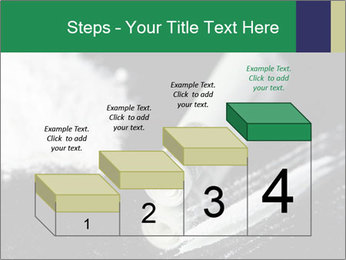 0000073947 PowerPoint Templates - Slide 64