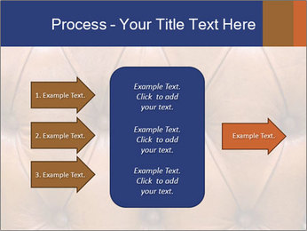 0000073949 PowerPoint Templates - Slide 85