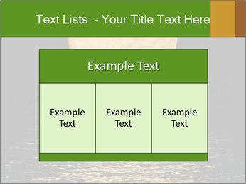 0000073951 PowerPoint Template - Slide 59