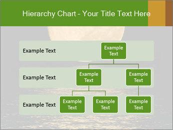 0000073951 PowerPoint Template - Slide 67