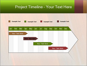 0000073955 PowerPoint Template - Slide 25