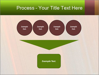 0000073955 PowerPoint Template - Slide 93