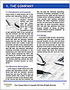 0000073959 Word Template - Page 3