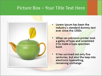 0000073960 PowerPoint Template - Slide 13