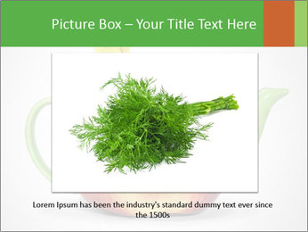 0000073960 PowerPoint Template - Slide 15