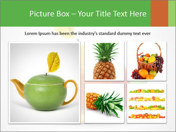 0000073960 PowerPoint Template - Slide 19