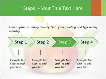 0000073960 PowerPoint Template - Slide 4