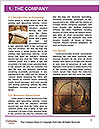 0000073961 Word Template - Page 3