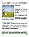 0000073970 Word Template - Page 4