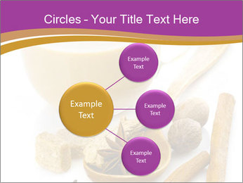 0000073971 PowerPoint Template - Slide 79