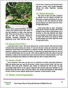 0000073988 Word Template - Page 4