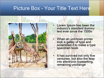 0000073995 PowerPoint Template - Slide 13