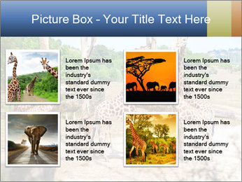 0000073995 PowerPoint Template - Slide 14
