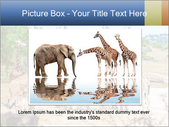 0000073995 PowerPoint Template - Slide 16