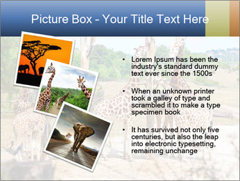 0000073995 PowerPoint Template - Slide 17