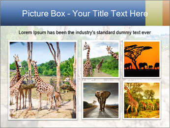0000073995 PowerPoint Template - Slide 19