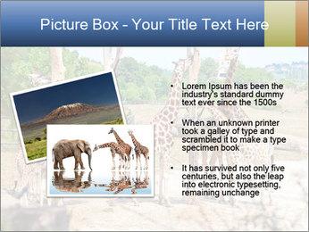 0000073995 PowerPoint Templates - Slide 20