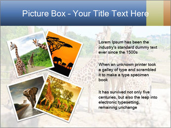 0000073995 PowerPoint Template - Slide 23
