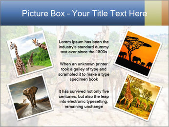 0000073995 PowerPoint Template - Slide 24