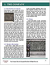 0000073996 Word Template - Page 3