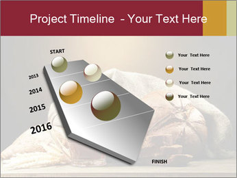 0000074003 PowerPoint Template - Slide 26