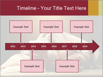 0000074003 PowerPoint Template - Slide 28