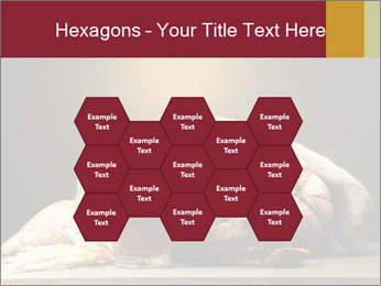 0000074003 PowerPoint Template - Slide 44