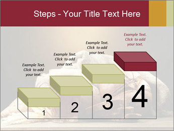 0000074003 PowerPoint Template - Slide 64