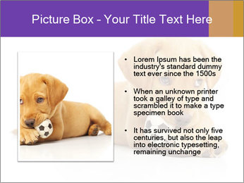 0000074004 PowerPoint Template - Slide 13