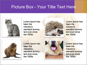 0000074004 PowerPoint Template - Slide 14