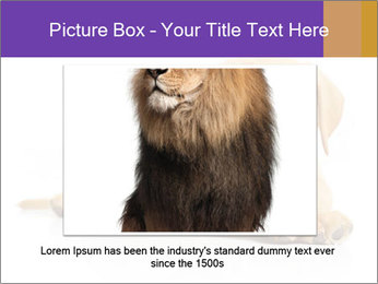 0000074004 PowerPoint Template - Slide 15