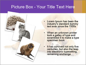 0000074004 PowerPoint Template - Slide 17