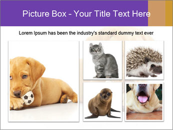 0000074004 PowerPoint Template - Slide 19