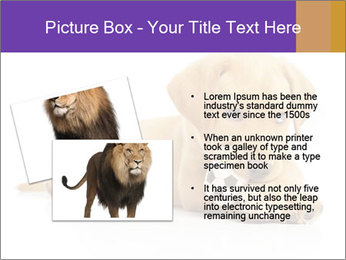 0000074004 PowerPoint Template - Slide 20