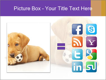 0000074004 PowerPoint Template - Slide 21