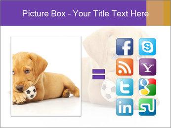 0000074004 PowerPoint Templates - Slide 21