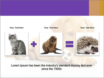 0000074004 PowerPoint Template - Slide 22