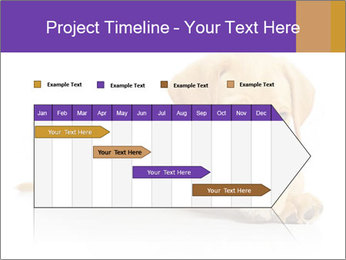 0000074004 PowerPoint Template - Slide 25
