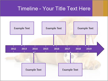 0000074004 PowerPoint Template - Slide 28
