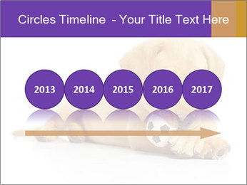 0000074004 PowerPoint Template - Slide 29