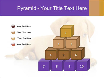 0000074004 PowerPoint Template - Slide 31