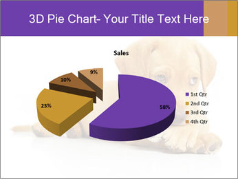 0000074004 PowerPoint Template - Slide 35